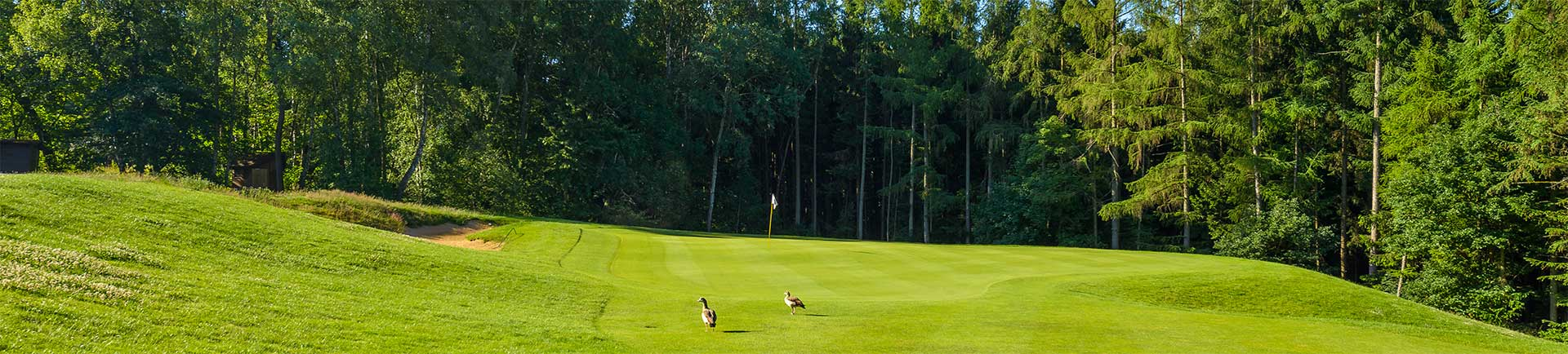 rheinblick-golfcourse-17