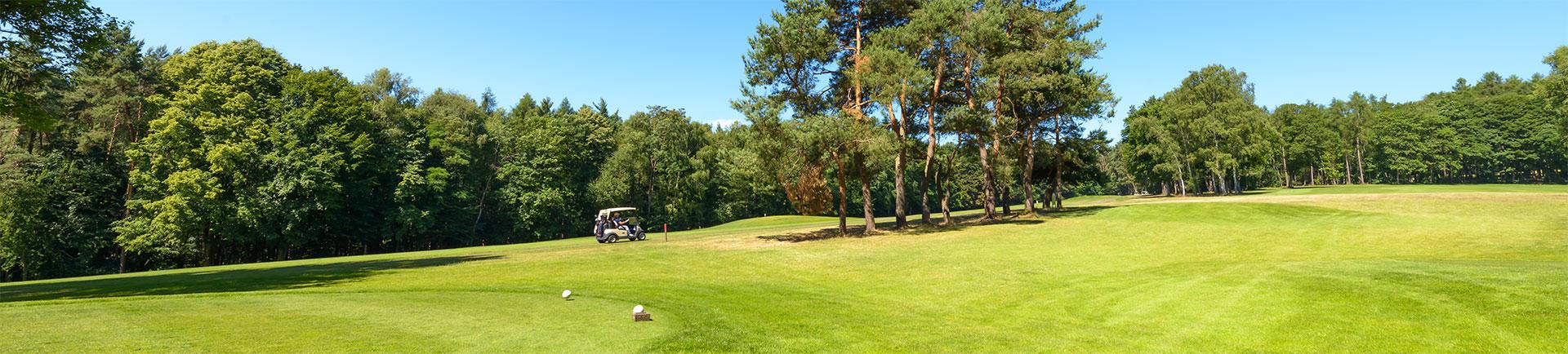 rheinblick-golfcourse-5